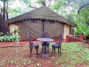 pool-side-tent3